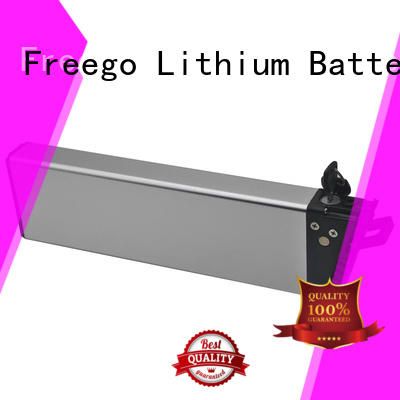 Freego titanate lithium battery for electric bike factory price for bike