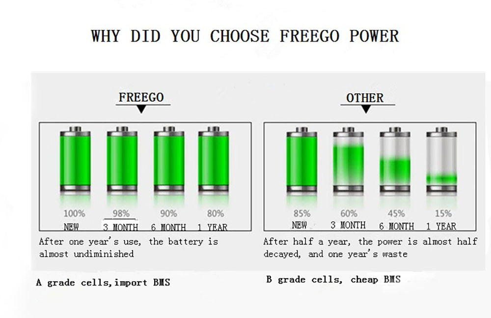 Freego professional electric scooter battery factory price for electric bike