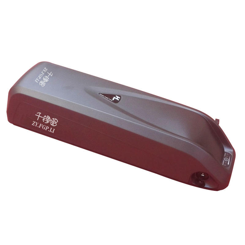 Hailong I 24V/36V/48V Electric Bike Battery