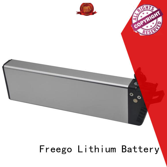 Freego 1000w e-bike battery factory price for electric bike