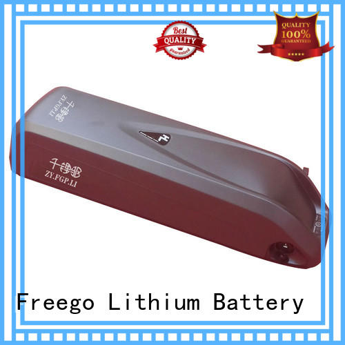 Freego customized ebike lithium battery on sale for electric bicycle