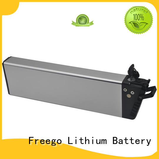 Freego safe electric bike battery 48v factory price for e-bike