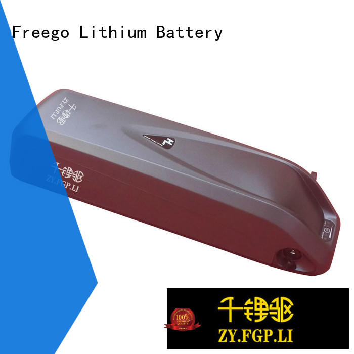 Freego titanate electric bike battery 48v on sale for electric bicycle