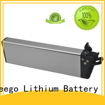Changzheng I S-062 24V/36V/48V  Lithium Titanate Battery