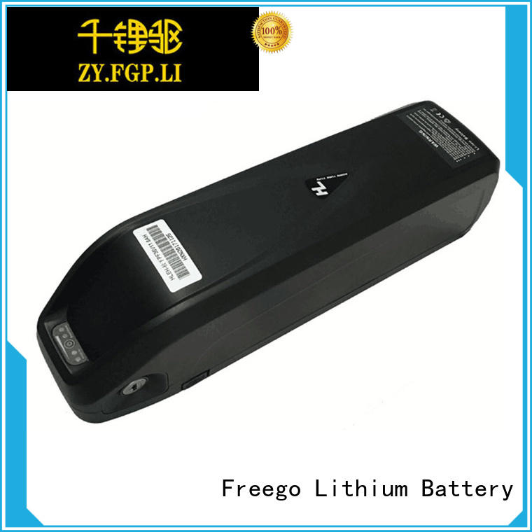 Hailong I-2 S-077 24V/36V/48V Lithium Ion Battery