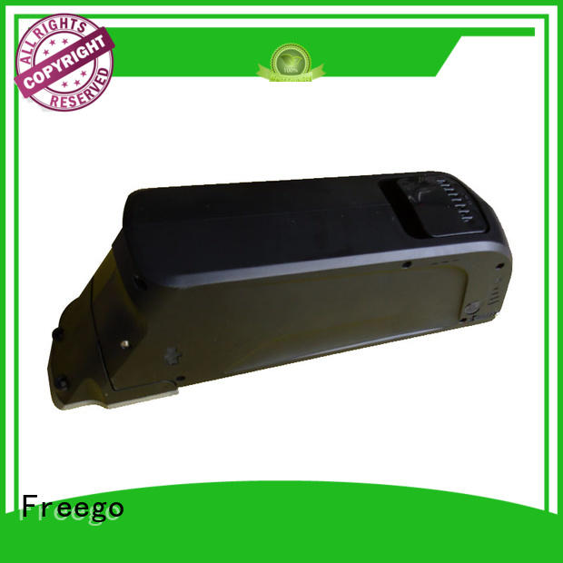 electric bike battery 48v 20ah e119 for e-bike Freego