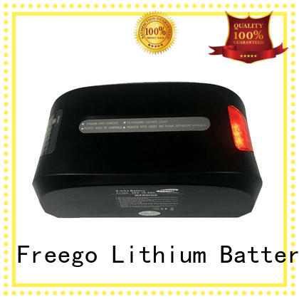 Freego titanate electric scooter battery wholesale for electric bike