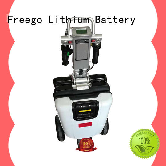Freego custom electric scooters supplier for outdoor