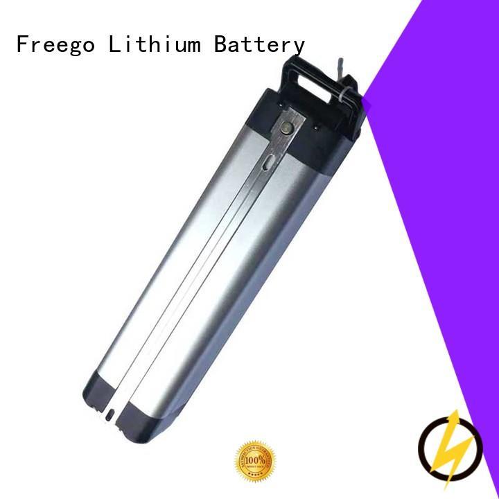 Silver Fish 24V/36V/48V Rechargeable Battery