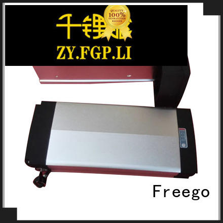 Freego lithium ebike battery factory price for electric bicycle