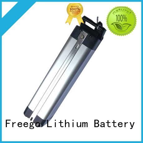 Freego battery ebike battery online for e-bike