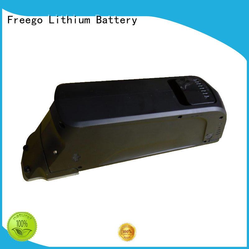 e119 best battery for bike battery for e-bike Freego