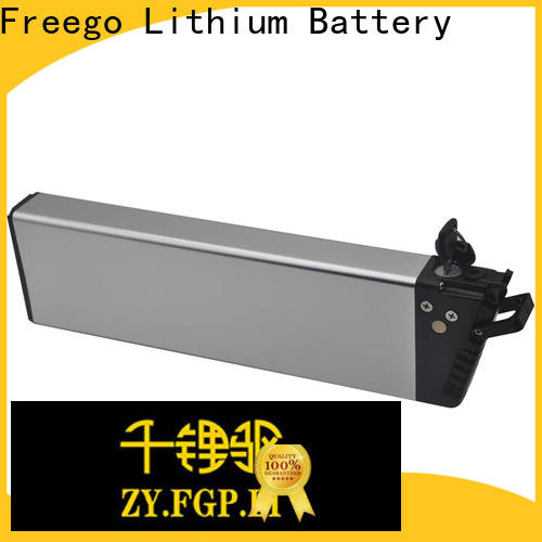 Freego 1000w lithium battery for electric bike factory price for bike