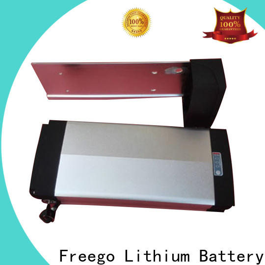 Freego customized electric bike battery 48v factory price for bike