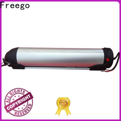 Freego changzheng ebike lithium battery factory price for electric bicycle